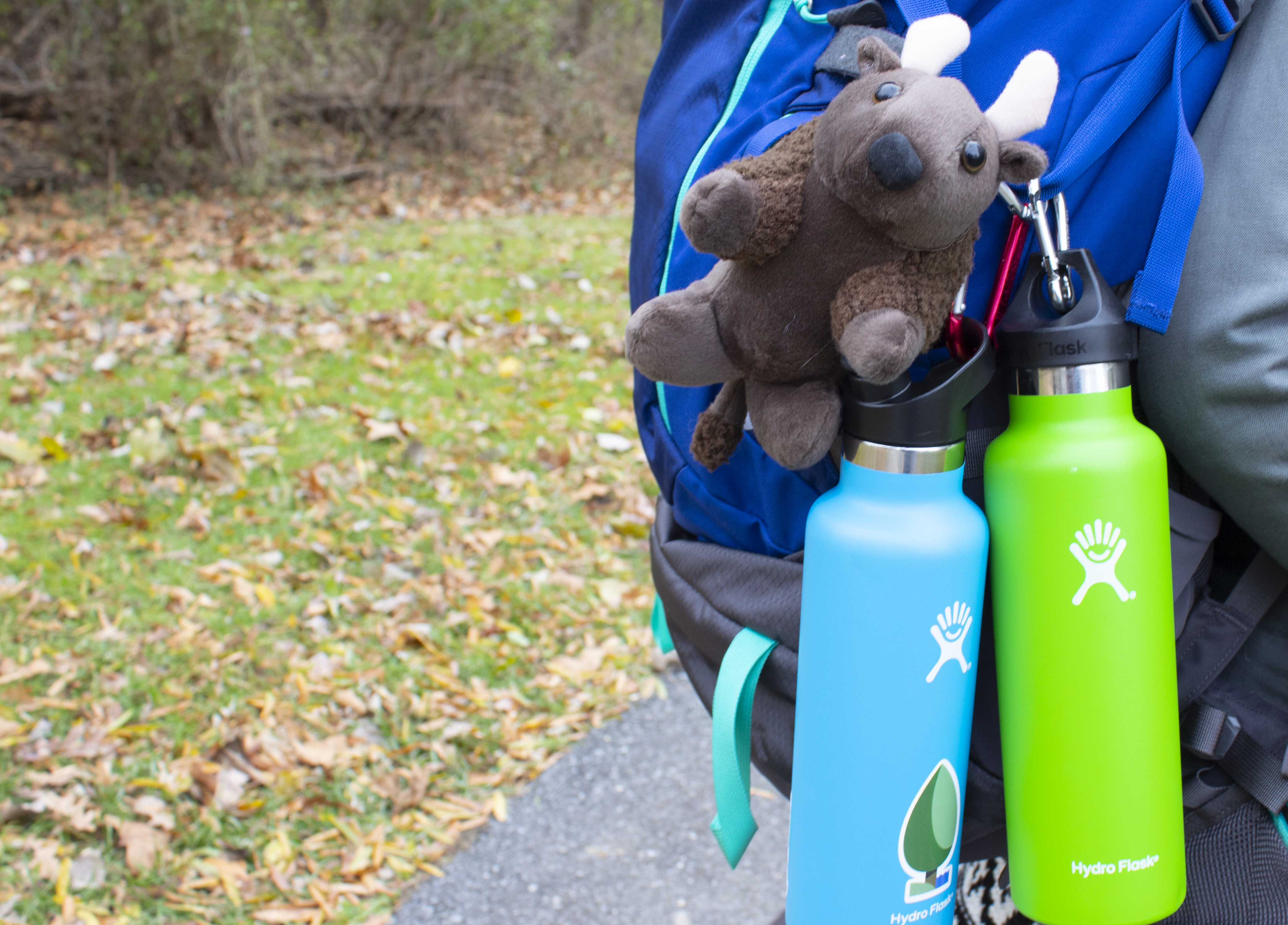 National Park Trust Receives 'Parks for All' Grant from Hydro Flask